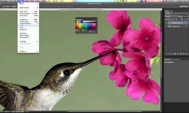 Curso de Photoshop CC #26 REPLACE COLOR – Mude uma cor rapidamente (Substituição de Cor)